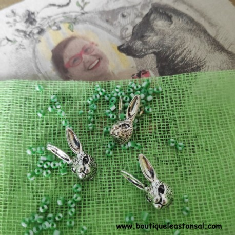CHARMS : Les lapins