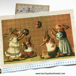 INSPIRATION : Image famille lapin 2